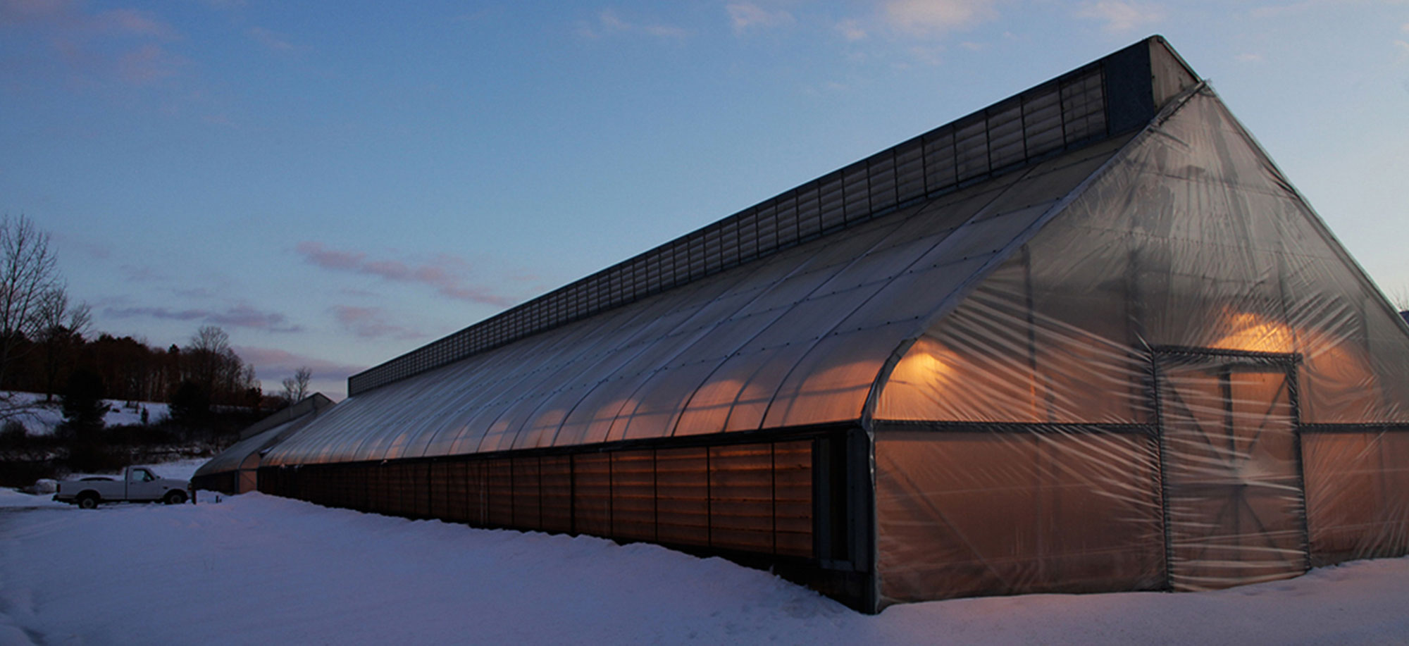 Greenhouse in the Winter